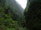 Isla de La Palma